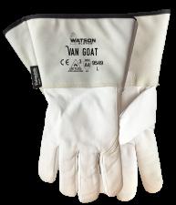 9549 Van Goat