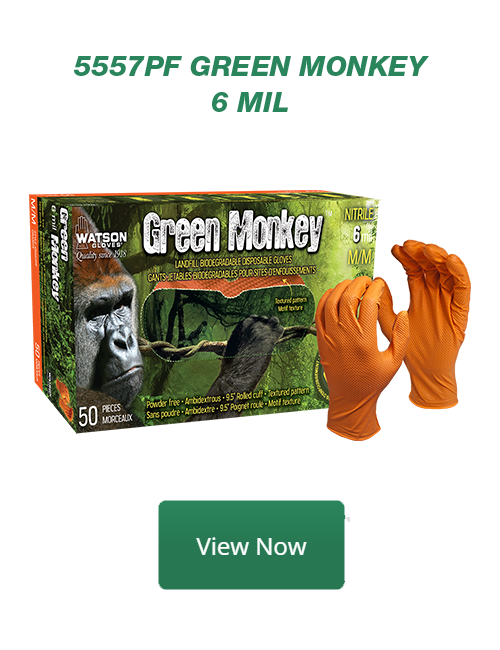 5557PF Green Monkey View Now