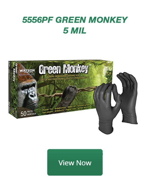 5556PF Green Monkey View Now